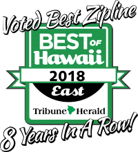 Voted Best Zipline 8 years in a row!