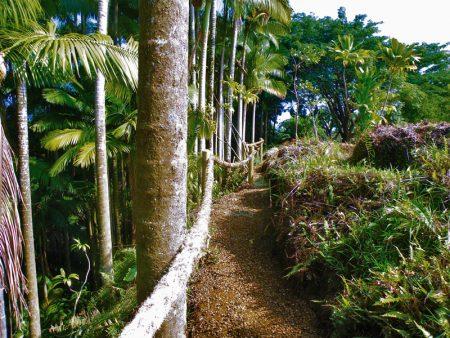 River Walk Trail
