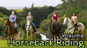 Wailea Horseback Riding at Umauma Falls