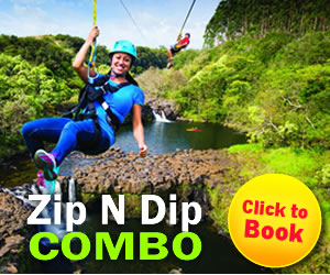 9 Line Zip & River Swim & Kayak!
