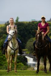 Horseback riding tour at Umauma Falls