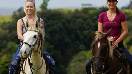 Horseback riding tours at Umauma Falls