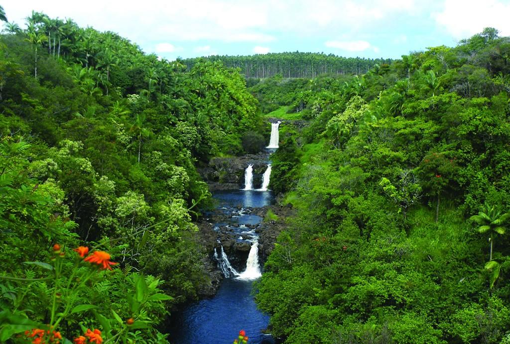 View of Umauma Falls